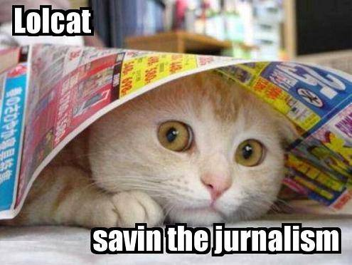 lolcat journaliste.jpg